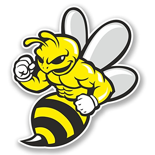 2 x 30cm/300mm Wasp Bee Hornet Vinyl Sticker Decal Laptop Travel Luggage Car iPad Sign Fun #5844