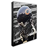 "Photo File NFL Beautiful Gallery Quality, High Resolution Canvas, 16"" x 20"""