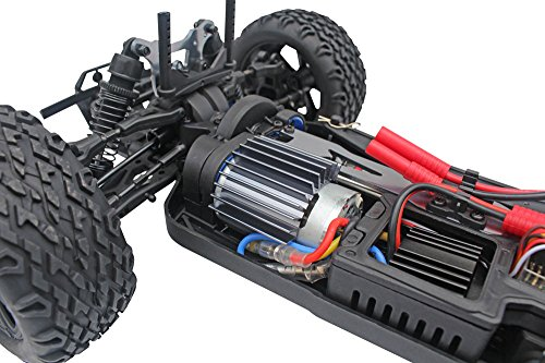 Blackout XTE 1/10 Scale Electric Monster Truck by Redcat Racing (Image #7)