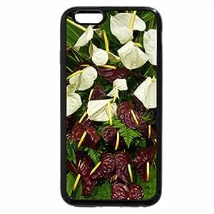 iPhone 6S / iPhone 6 Case (Black) Festival flower