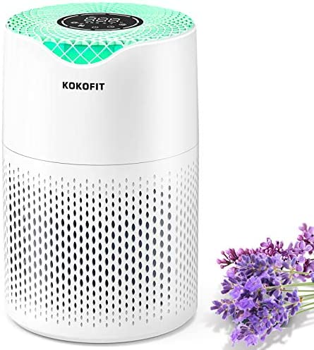 KOKOFIT HEPA Air Purifier for Home Bedroom, Allergies and Pets Hair Smokers, Small True HEPA Filter Desktop Air Cleaner ,Odor Eliminators, Remove 99.97% Dust Smoke Mold Pollen with Sleep Mode, Night Light