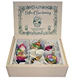 "Inge-Glas ""Gifts Of Gardening"" German Glass Christmas Ornament Box Set"