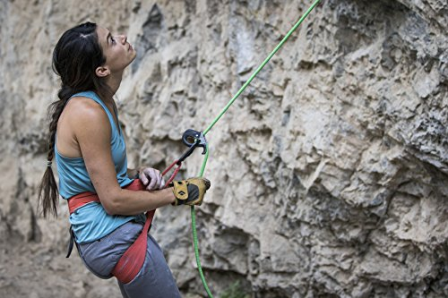Black Diamond Crag Climbing Gloves