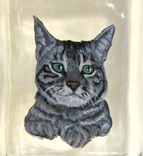Cat Custom Portrait, Pet Treat Jar, Hand Painted Canister, Food Storage  Container,