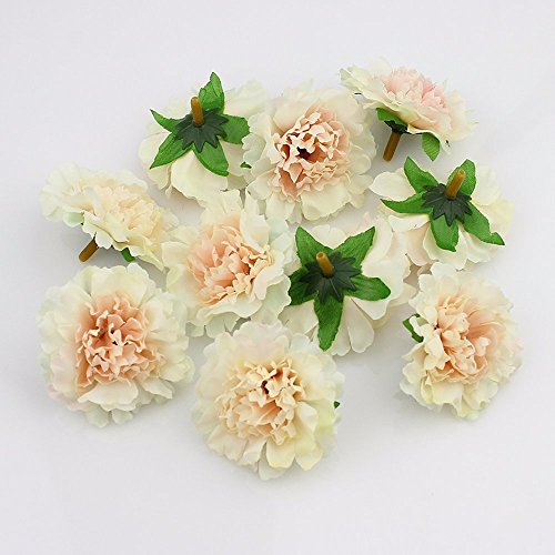 Champagne Ball Ornament - Fake flowers heads Approx 5cm Artificial carnation Flower Head Handmade festival Decor Home Decoration DIY Event Party Supplies Wreaths 30pcs/lot (champagne)