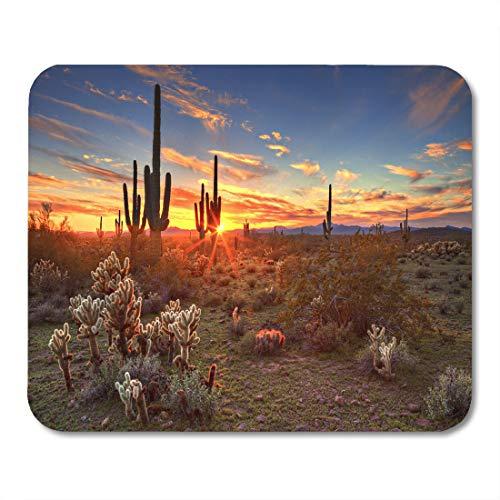Emvency Mouse Pads Cactus Saguaros at Sunset in Sonoran Desert Near Phoenix Arizona Flower Mousepad 9.5