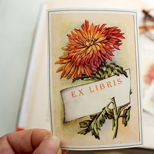 Autumn Chrysanthemum Bookplate Stickers personalized book labels set of ten