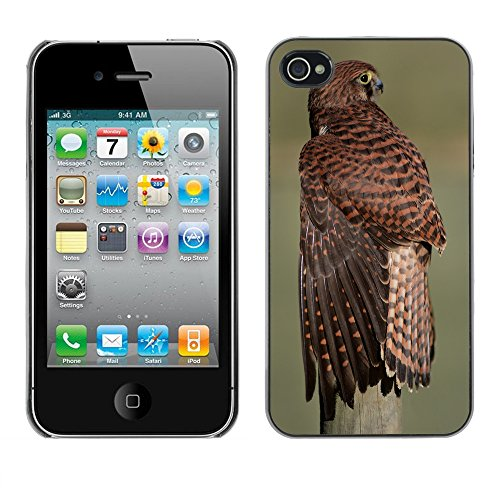 Premio Sottile Slim Cassa Custodia Case Cover Shell // F00012959 aigle // Apple iPhone 4 4S 4G