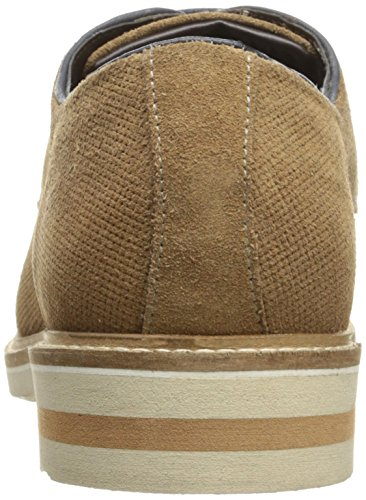 Steve Madden Mens Horten Oxford Marrone In Camoscio