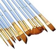 Ajcoflt 12 peças de pincéis de pintura com detalhes finos, conjunto de pincéis de cabelo de duas cores para pi