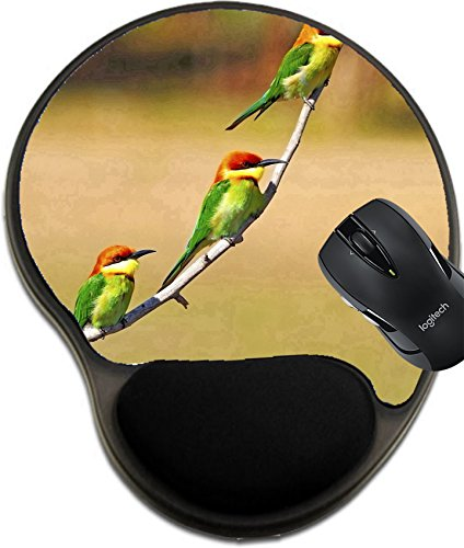 MSD Mousepad wrist protected Mouse Pads/Mat with wrist support design 21266636 Right face of three Chestnut headed bee eaters on a - Right Your For Face The Find Frames