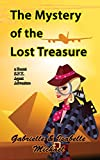 The Mystery of the Lost Treasure (A Secret SPY Agent adventure Book 3)