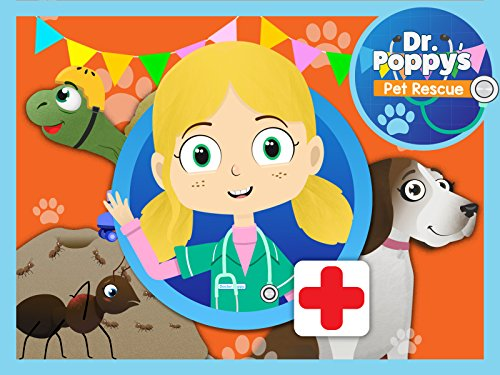 Alice The Ant Visits Dr Poppy's Pet Rescue: Animals