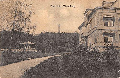 Mosseberg Sweden Gazebo Building Tower Antique Postcard J25758