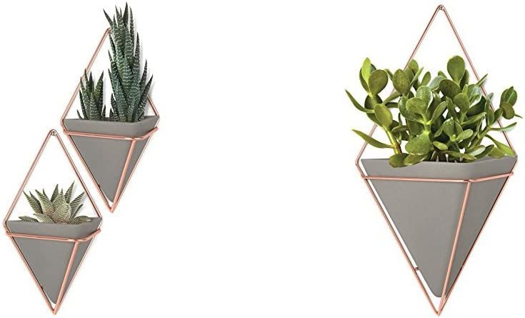 Umbra Trigg Hanging Planter Vase & Geometric Wall Decor Container - Great for Succulent Plants, Air Plant, Mini Cactus, Faux Plants and More, Concrete Resin/Copper (Set of 3) Small (2) and Large (1)