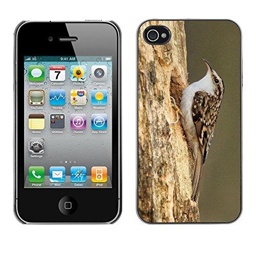 Premio Sottile Slim Cassa Custodia Case Cover Shell // F00004103 oiseau // Apple iPhone 4 4S 4G