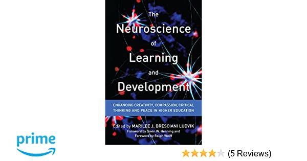 Amazon com: The Neuroscience of Learning and Development