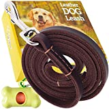 ADITYNA Leather Dog Leash 6 Foot x 1/2 inch - Leather Leash for Small Dogs - Perfect for Walking and Training - Heavy Duty Dog Leash Leather (Brown)