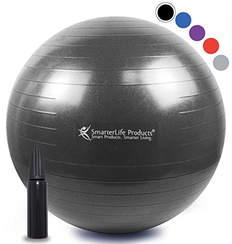 Exercise Ball for Yoga, Pilates, Therapy, Balance, Stability, Posture Support, Desk Chair and Birthing | Anti Burst, Non Slip Design | Workout Guide + eBook | Multiple Sizes (Black, 65 cm)