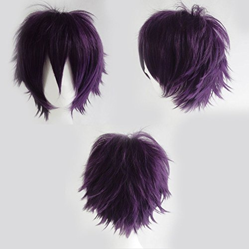 Anime Cosplay Synthetic Full Wig with Bangs 20 Styles Short Layered Fluffy Hair Oblique Fringe Full Head Unisex +Stretchable Elastic Wig Net for Man and Women Girls Lady Fashion (Dark (Sexy Updo)
