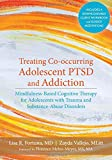 img - for Treating Co-occurring Adolescent PTSD and Addiction: Mindfulness-Based Cognitive Therapy for Adolescents with Trauma and Substance-Abuse Disorders book / textbook / text book