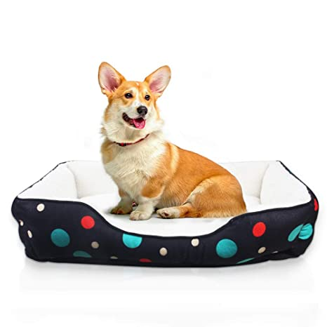 Amazon.com: Allisandro - Manta para perro, muy suave y ...