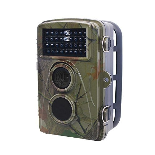 【当店一番人気】 std Trail 12MP Vision CameraGame&Scouting Camera [並行輸入品] For Deer Wildlife Hunting With 12MP 1080P 65ft Low Glow Infrared Night Vision Waterproof IP56 2.4 LCD Screen [並行輸入品] B07CRW7F7N, 最新作:bd92c4ad --- martinemoeykens-com.access.secure-ssl-servers.info