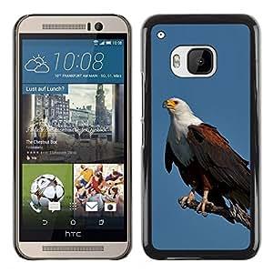 FlareStar Colour Printing Eagle Blue Bird Feathers Black American cáscara Funda Case Caso de plástico para HTC One M9