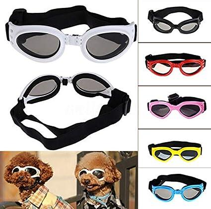 snaked cat Gafas de Sol para Mascotas Perro Gafas portátiles ...