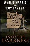 Into the Darkness: A Ridge Falls Story (The Ridge Falls Series) (Volume 1)