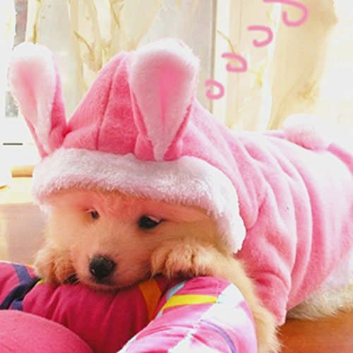 [Idepet(TM) Bunny Puppy Dog Cat Costume Pet Clothes Hoodie Coat Rabbit Dressing up Clothes for Dog Chihuahua Yorkshire Poodle] (Cat In Bunny Costume)