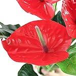 JAROWN-5-Heads-Artificial-Anthurium-Faux-Christmas-Flowers-Green-Leaves-Fake-Bouquet-Plants-for-Bonsai-Garden-Decoration