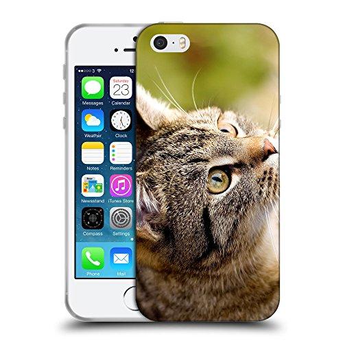 Just Phone Cases Coque de Protection TPU Silicone Case pour // V00004172 Accueil chat regarde jouer // Apple iPhone 5 5S 5G SE