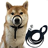 "Dog Head Collar Halter Durable Painless No Pain No Pull Training Collars with Leash (M(12""-20""), Black)"