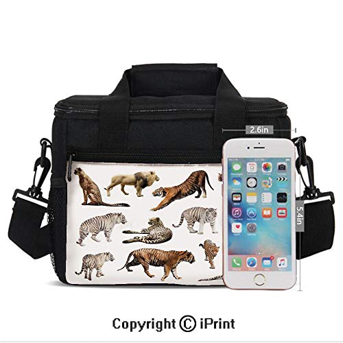 (Portable Insulated Cold Collection of Tigersand other Big Wild Cats Predatory Feline Zoo Lying Standing Background Print Picnic Carry Case Thermal Lunch Bag,)