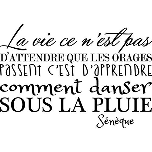 Quotes Vinyl Wall Art Decals Saying Words Removable Lettering French Quote La Vie N'Attend Pas Les Orages Life is Not Waiting for Thunderstorms