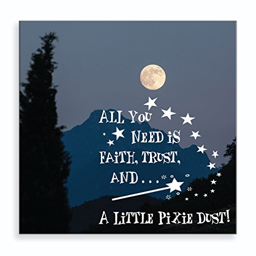 A Full Moon View with Message All You Need is Faith, Trust and… A Little Pixie Dust Aluminum Metal Photo Print Wall Art Wall Décor - 16
