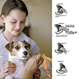 Professional Dog Cat Nail Clipper and Trimmer