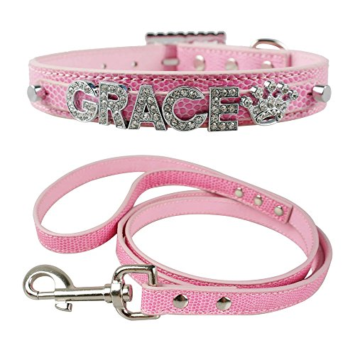 Didog(TM)Personalized Small Girl Dog Collar & Leash Set with Free Customized Bling Name Letters and Charms for Yorkshire Terrier, Shih tzu(Pink, S 10-12