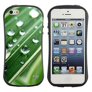 Fuerte Suave TPU GEL Caso Carcasa de Protección Funda para Apple Iphone 5 / 5S / Business Style Green Water Drop Macro Leaf