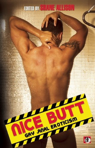 Nice Butt: Gay Anal Eroticism by Bold Strokes Books