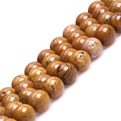 Petrified Wood Beads (10mm Round Natural Yellow Petrified Silicified Wood Jasper Semi Precious Gemstone Beads for Jewelry Making 15