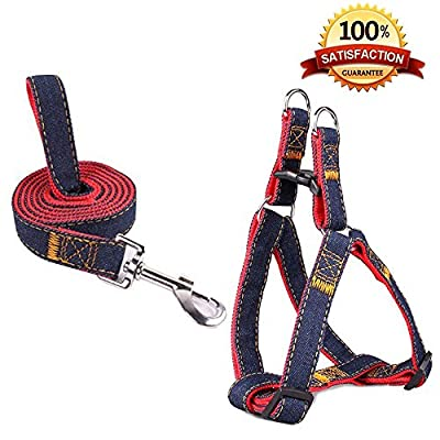 SUMCOO New Update Version Adjustable NO-pull Pet Dog and Cat Leash Harness set with Martingale Bark Collars for Small/Medium/Large Dogs and Cats by SUMCOO