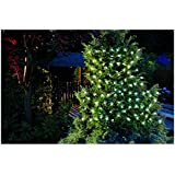 Cole & Bright 6741-100Count Solar LED String Lights