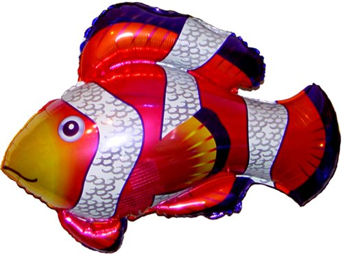 Compare price to flying clown fish for Clown fish price