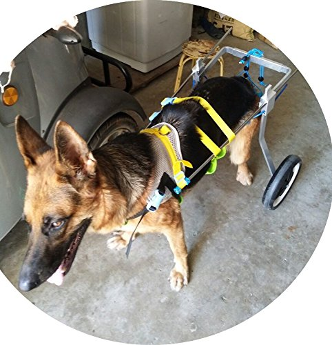 New! Two Wheels Adjustable Dog Wheelchair, cart, 7 Sizes for hind Legs Rehabilitation, 3D Soft Harness,Light Weight, Easy Assemble, Belly Band Specially for Spondylitis (6.New-L) by Newlife Mobility (Image #3)