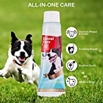 CooZero Dog Dental Care Kit, 2 Pack Dog Toothpaste and Dog Toothbrush Set Pet Soft Toothbrush Dog Finger Toothbrushes Pet Toothbrush for Cats and Dogs - Small to Large Dogs 13