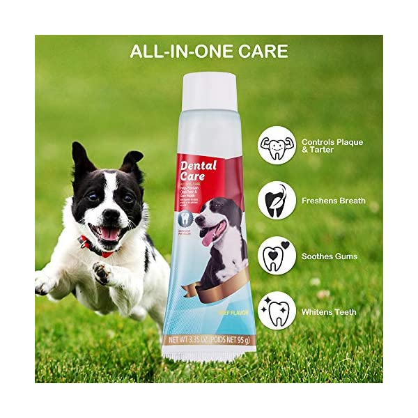 CooZero Dog Dental Care Kit, 2 Pack Dog Toothpaste and Dog Toothbrush Set Pet Soft Toothbrush Dog Finger Toothbrushes Pet Toothbrush for Cats and Dogs - Small to Large Dogs 6
