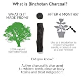Black + Blum Charcoal Water Filter Sticks