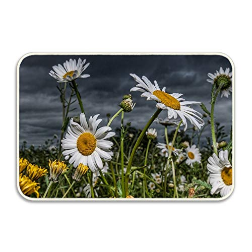 Sole Rubber Stitch (Niaocpwy Daisies Field Non-Slip Rubber Sole Entrance Door Mat Doormats)
